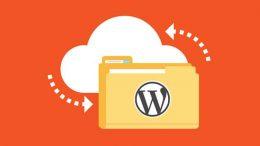 WordPress Site Yedeği Nasıl Alınır?