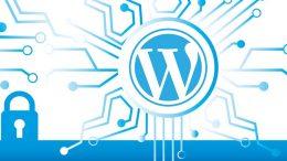 WordPress Nasıl Giriş Yapılır?